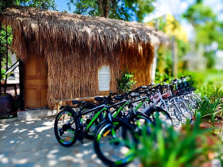 Ở đây có cho thuê xe đạp