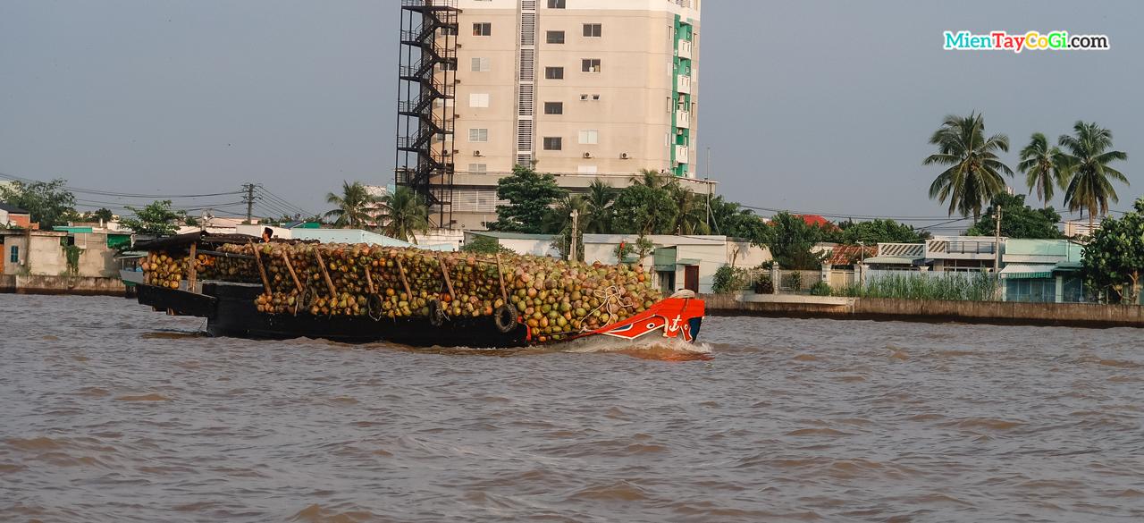 Tàu chở đầy dừa rời khỏi chợ nổi Cần Thơ