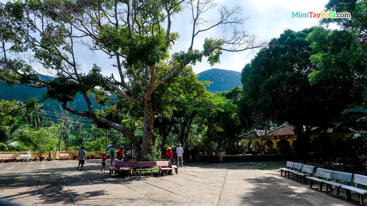 Khuôn viên rộng rãi nhiều cây xanh