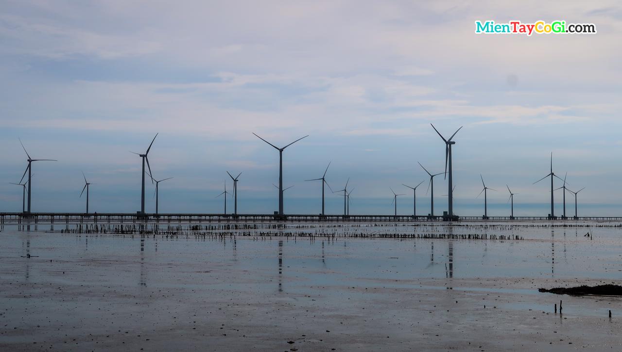 Điện gió miền Tây