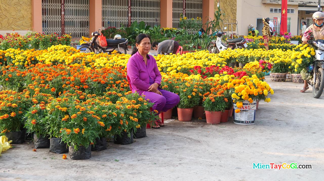 Hộ gia đình chợ người mua hoa trưng Tết