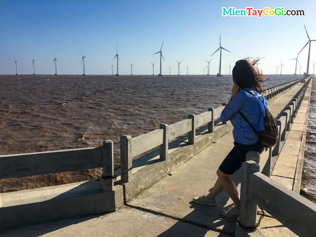 Khách tham quan check in cánh đồng quạt gió Bạc Liêu