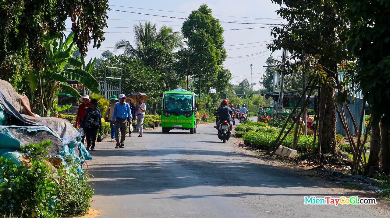 Khách du lịch tham quan làng hoa bằng nhiều phương tiện