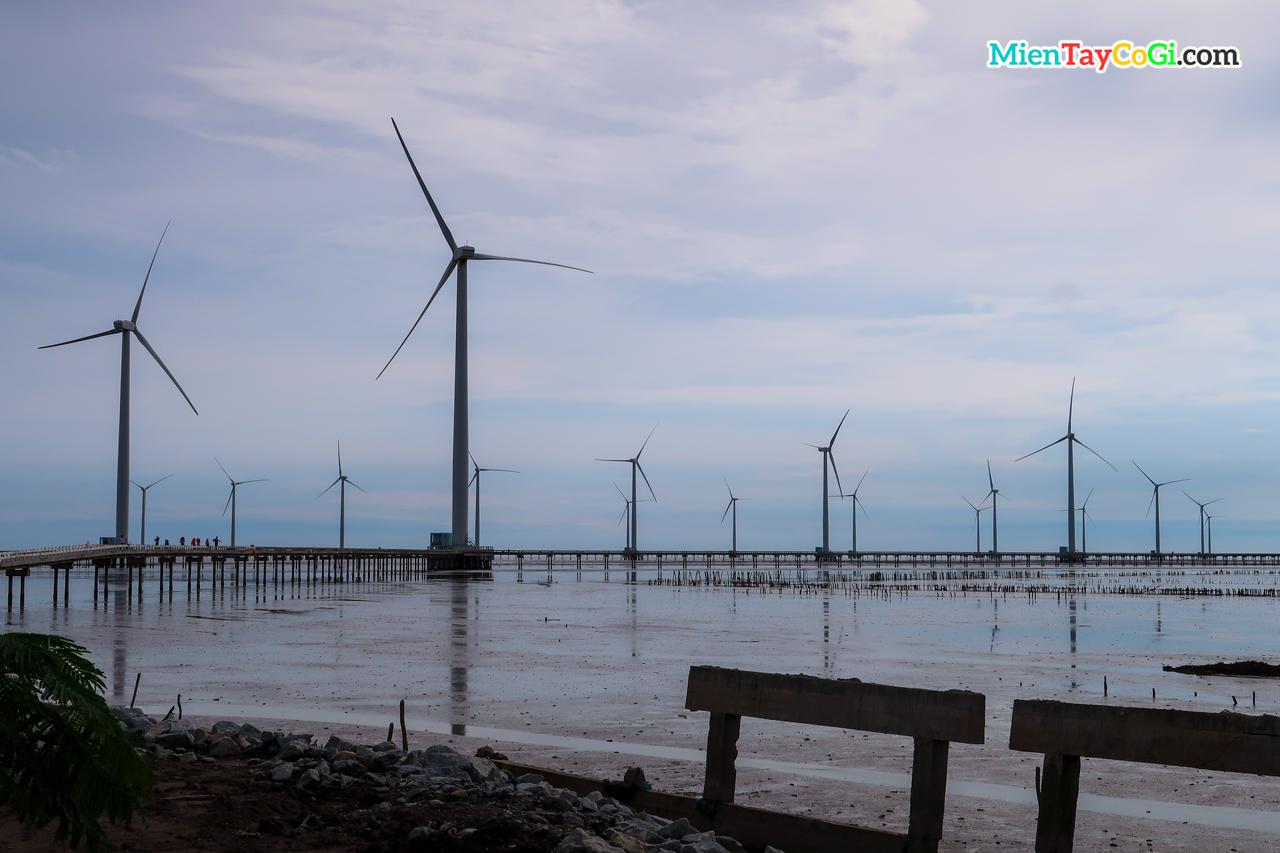 Khung cảnh xung quanh cánh đồng điện gió Bạc Liêu