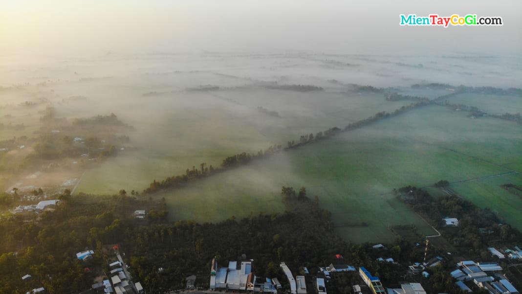 Sương mờ phủ trên các cánh đồng ở Hậu Giang