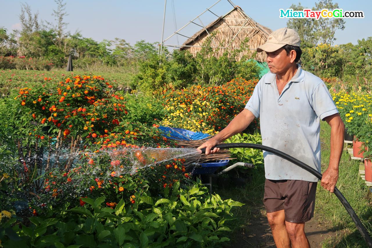 Trồng hoa tưới cây ở Làng hoa Sa Đéc