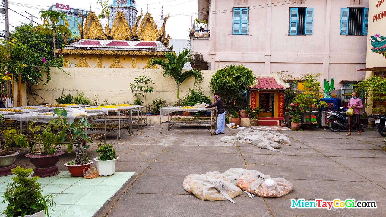 Nơi phơi thuốc trước sân chùa