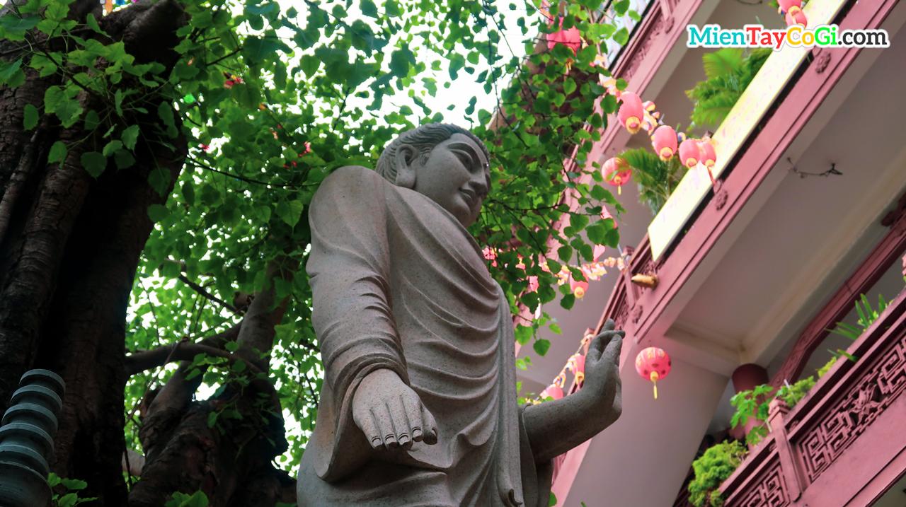 Tượng Phật Thích Ca nghiêm trang dưới gốc cây
