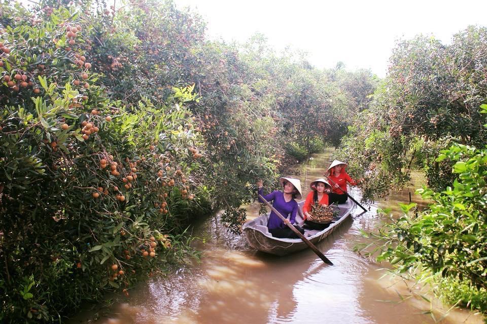 Bơi xuồng tham quan vườn trái cây ở KDL Mỹ Khánh