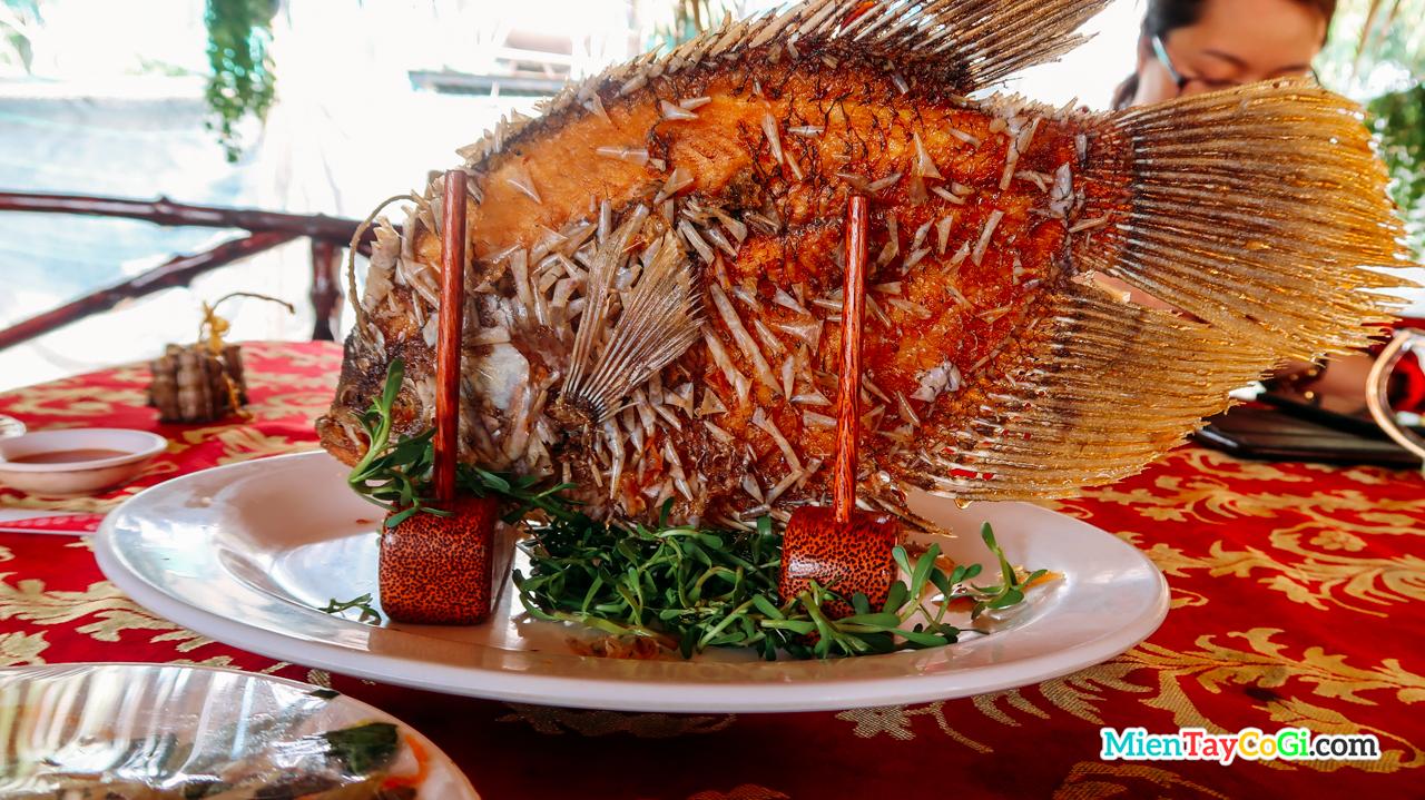 Món cá tai tượng chiên xù hấp dẫn