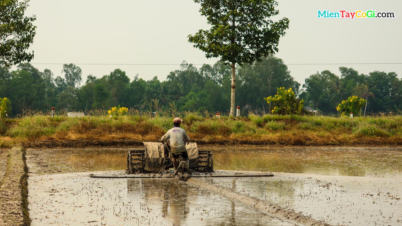 Nông dân trục đất bằng máy