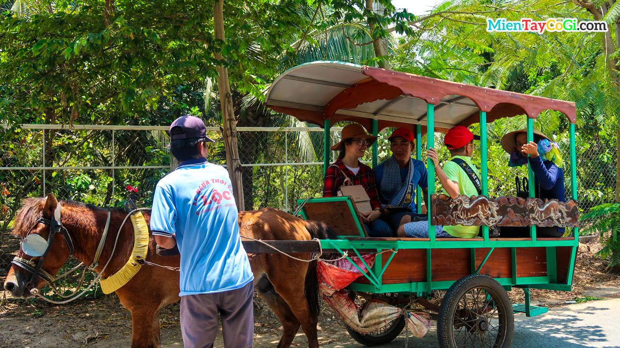 Ride a horse cart on the shady green village road