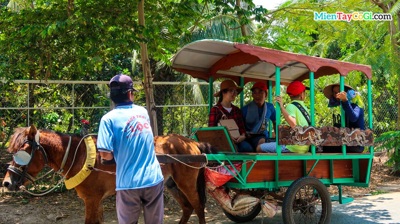 Ngồi xe ngựa đi trên con đường làng xanh bóng mát