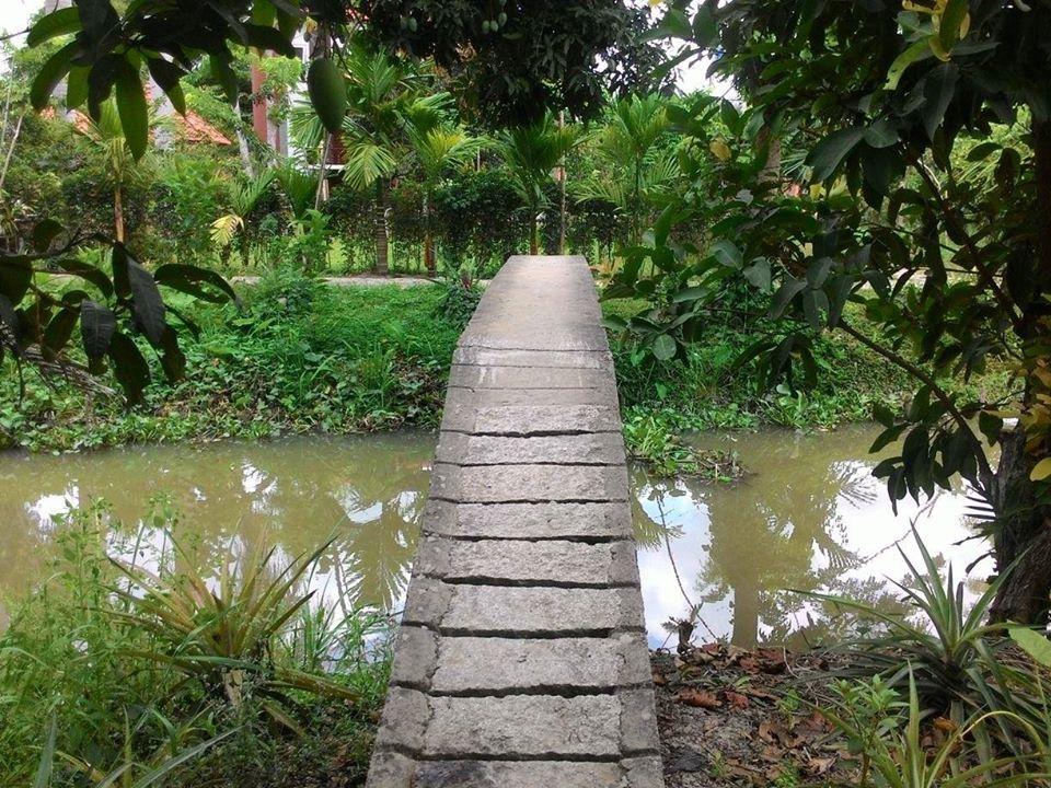 Cây cầu với vườn cây