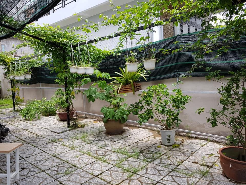 Vườn sau của Happy homestay Cần Thơ