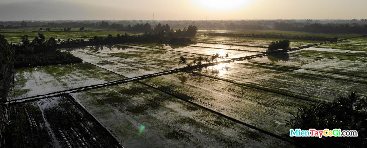 Ruộng đồng miền Tây Việt Nam