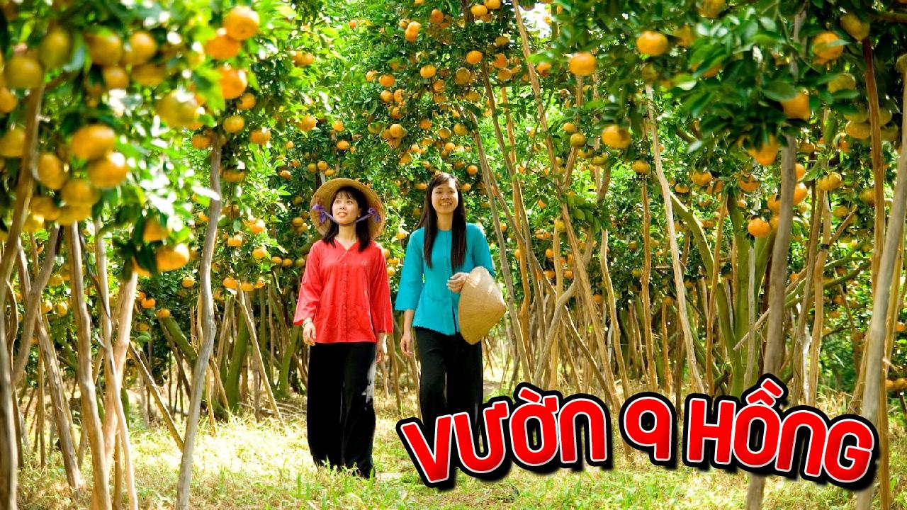 Vườn trái cây Chín Hồng