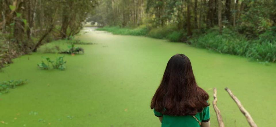 Check in Bèo phủ xanh mặt nước