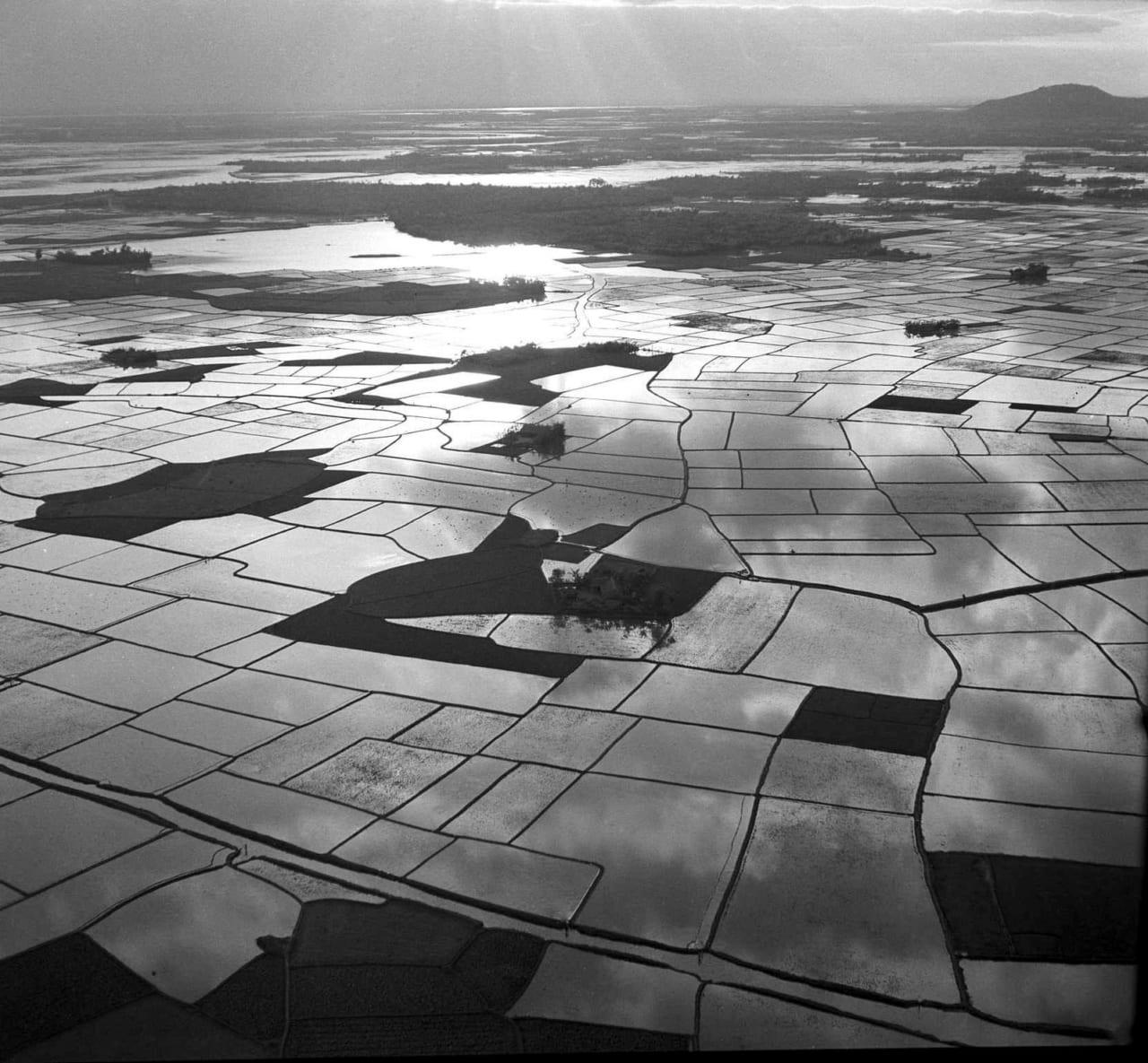 Ruộng lúa ở Mũi Cà Mau xưa trước năm 1975