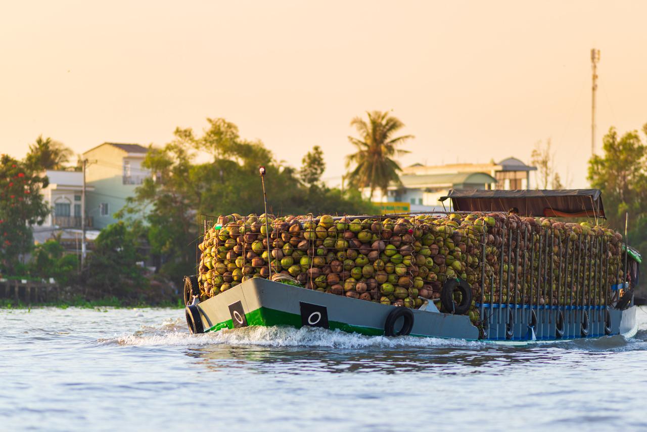 Tàu chở dừa ở Chợ nổi Cái Răng Cần Thơ