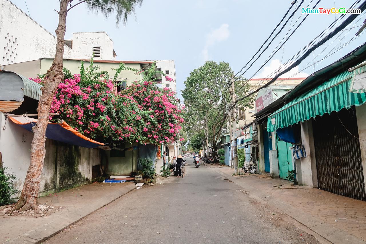 Đường Nguyễn Đình Chiểu - Ninh Kiều - Cần Thơ