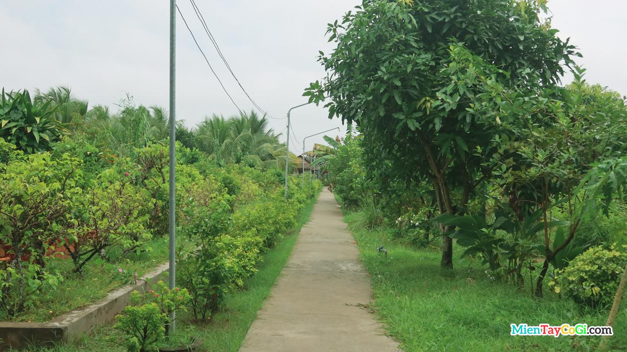 Khu thiền thất là một khu vườn xanh trồng nhiều trái cây đậm chất miệt vườn miền Tây