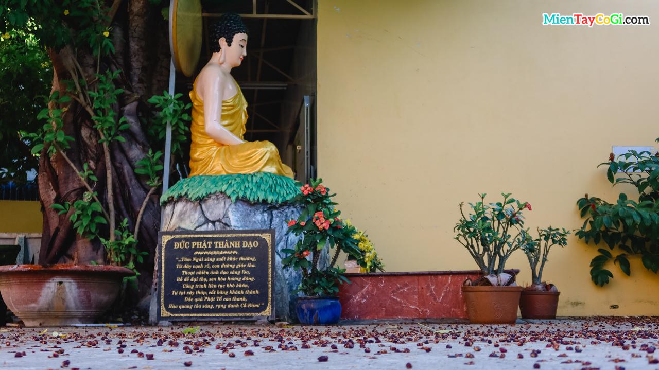 Mô phỏng đức Phật thành đạo dưới cây bồ đề