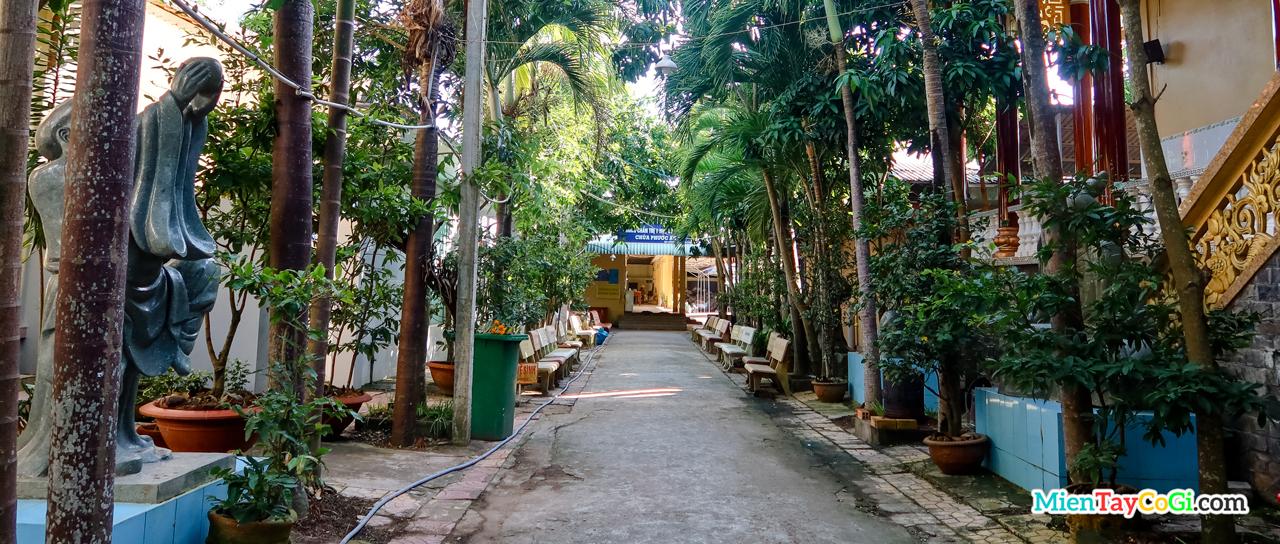 Con đường dẫn vào phòng khám bệnh chùa Phước An