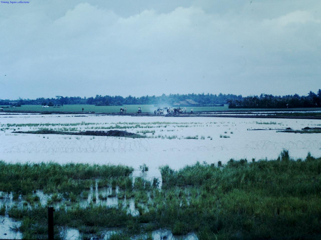 Những cánh đồng lúa xung quanh Bình Phước Base Camp tháng 8 năm 1967 | Photo by Fletcher Clyde