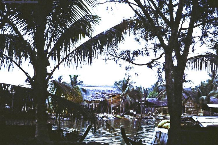 Khung cảnh làng quê ven sông ở Bến Lức năm 1967 - 1968 | Photo by DAve Paine