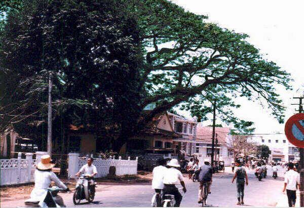 Đường Lê Lợi năm 1968 - bên trái là cây còng, bên phải là quán cà phê Vân