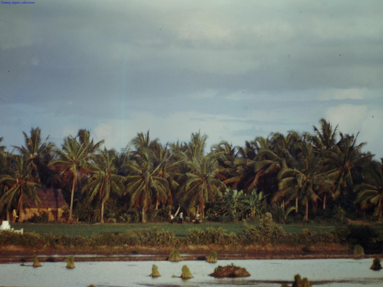 Khung cảnh miền Tây gần trại Bình Phước tháng 9 năm 1967 | Photo by Fletcher Clyde