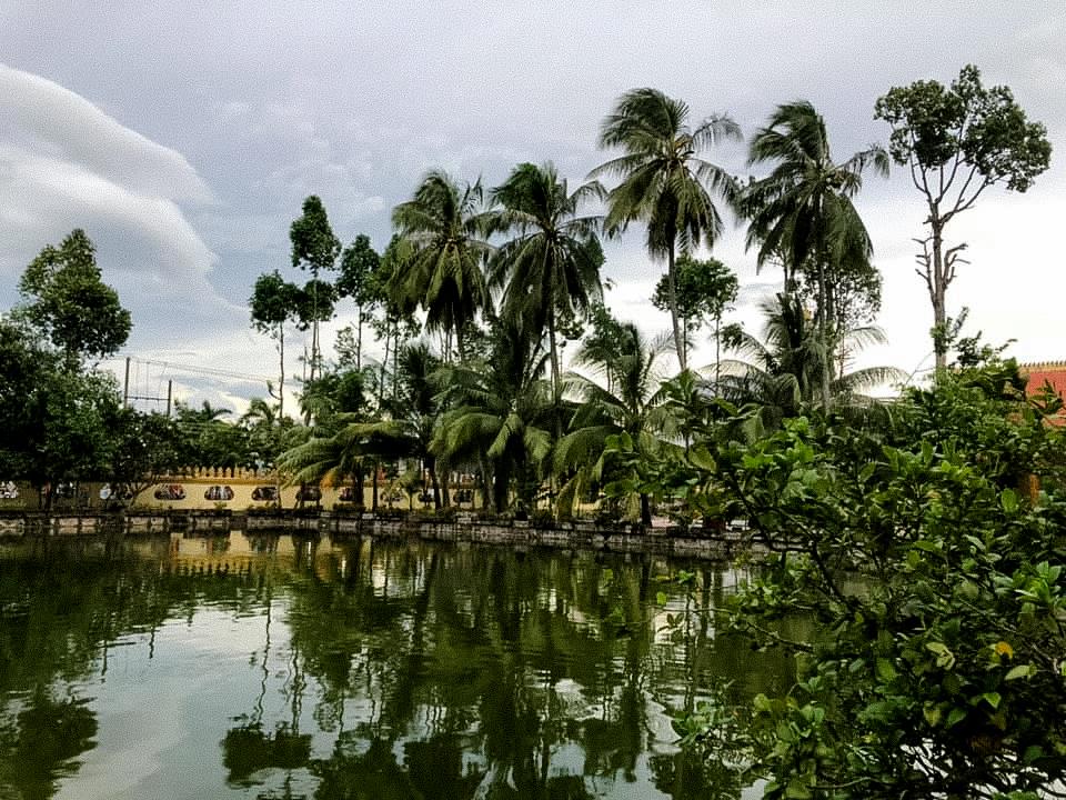 Những hàng cây phủ bóng bên hồ nước