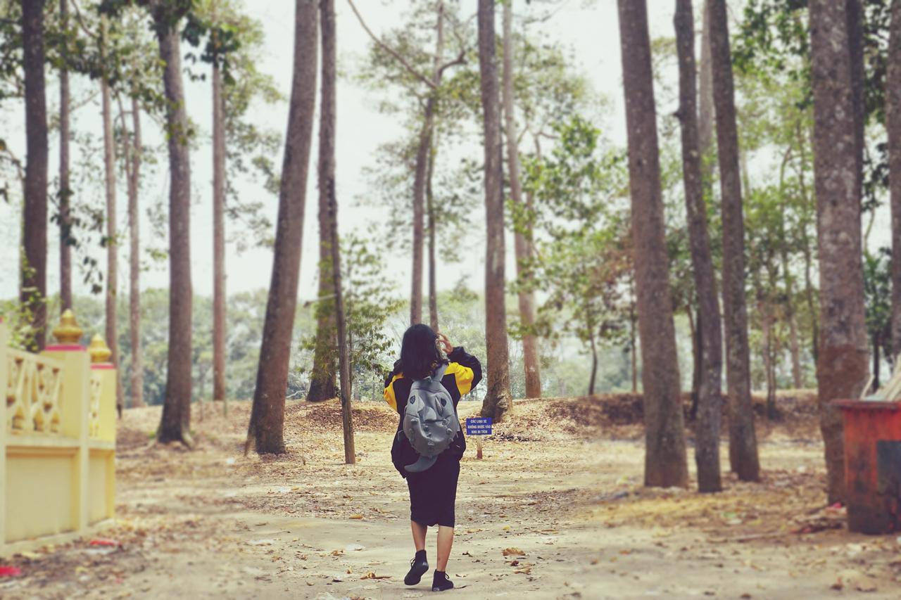 Khách du lịch khám phá khu vực gần ao Bà Om Trà Vinh