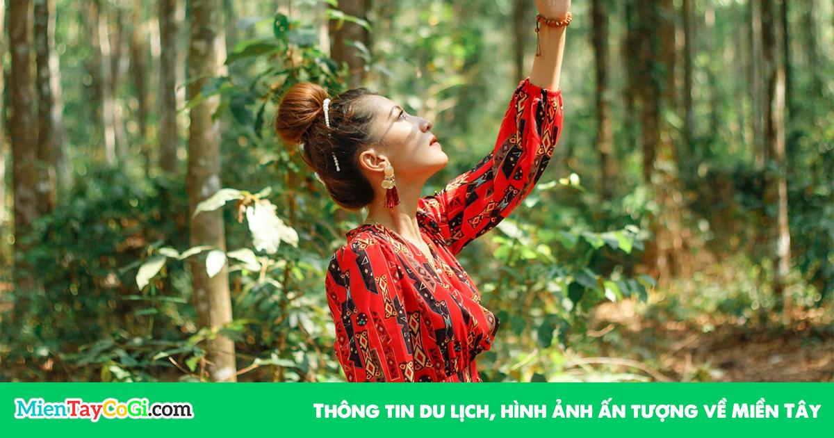 Rừng Cây Sao Tri Tôn An Giang | Hướng dẫn đường đi | Review hình ảnh