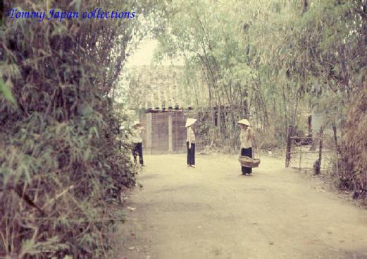 Ảnh chụp ở một khu làng quê xa xôi ở Cần Thơ năm 1967