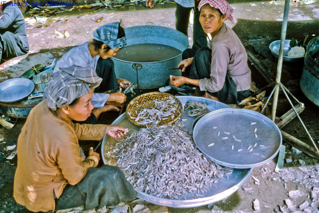 Cá cơm ở chợ Mỹ Tho năm 1969   Photo by Lance Cromwell