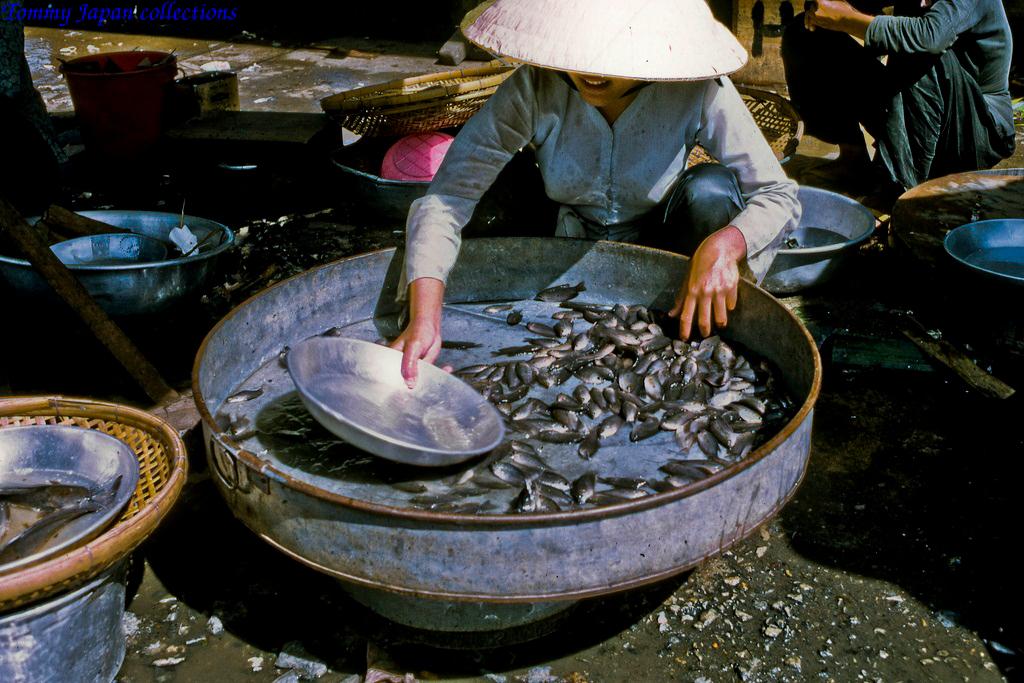 Cá sặc đồng chợ Mỹ Tho năm 1969   Photo by Lance Cromwell