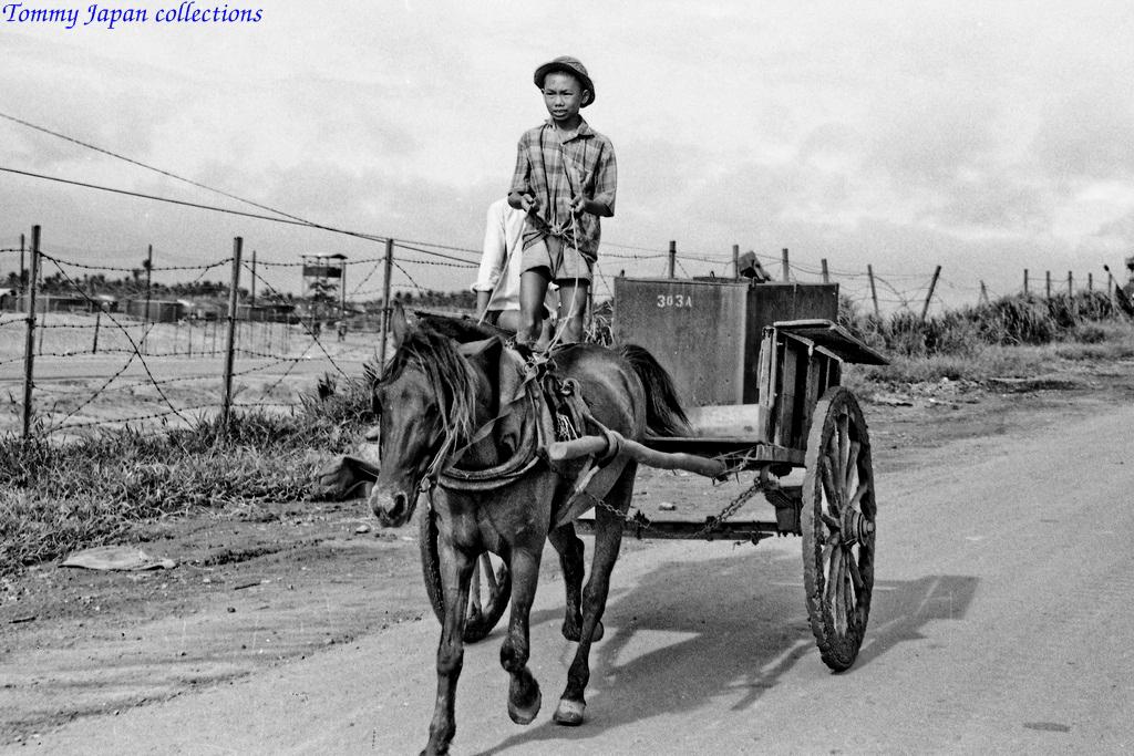 Cậu bé lái xe ngựa ở quốc lộ 1 nối Mỹ Tho và Sài Gòn năm 1969   Photo by Lance Cromwell