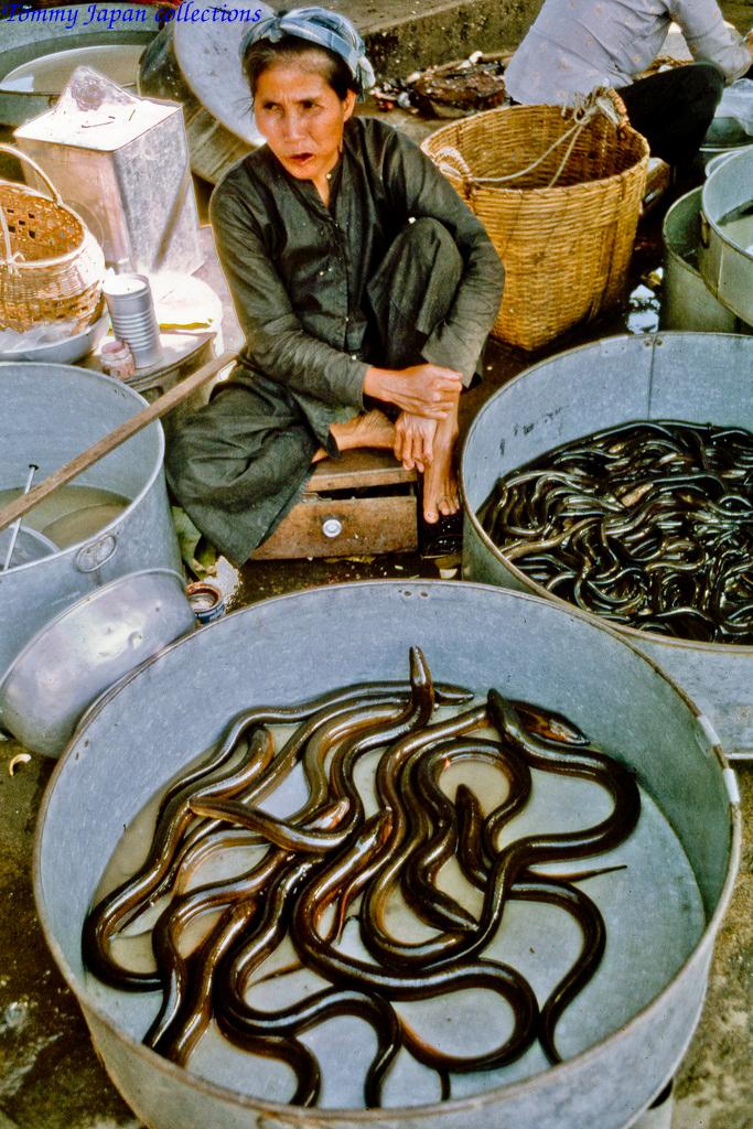 Bày bán lươn ở chợ Mỹ Tho năm 1969   Photo by Lance Crormwell