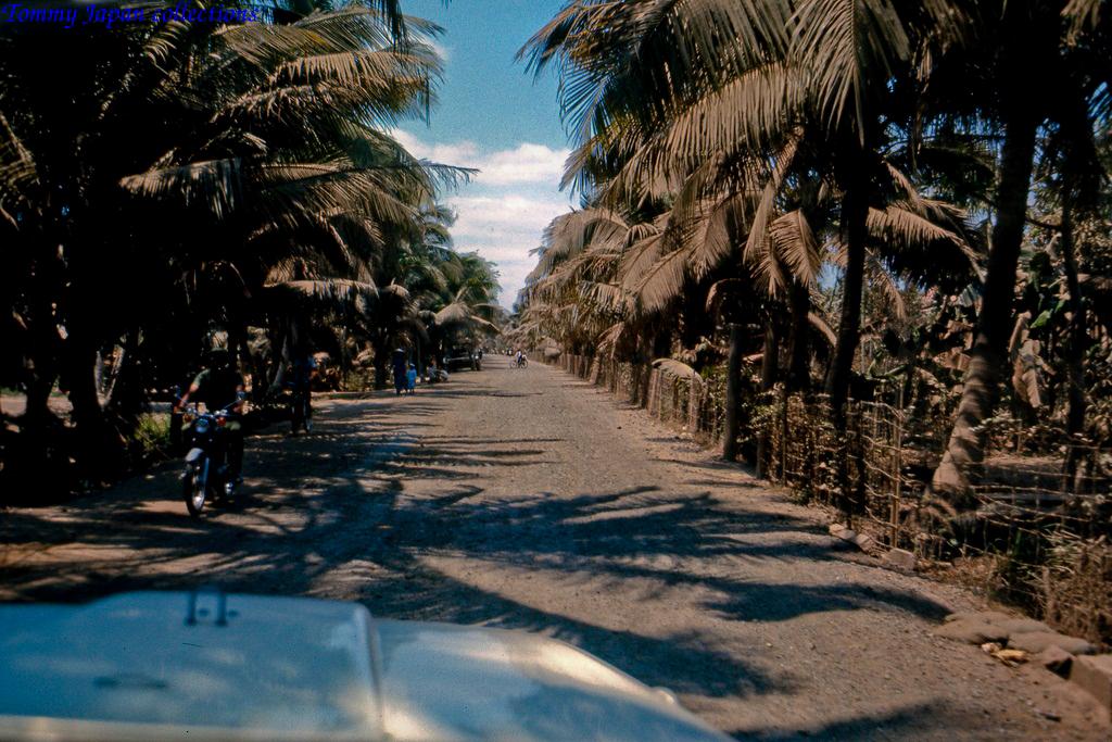 Con đường đi đến Mỹ Tho với những hàng dừa phủ đầy bụi đất sét