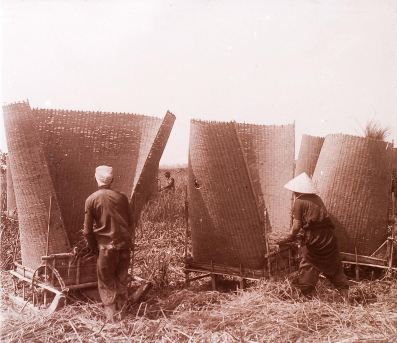 Đập lúa ở Châu Đốc thập niên 1920s