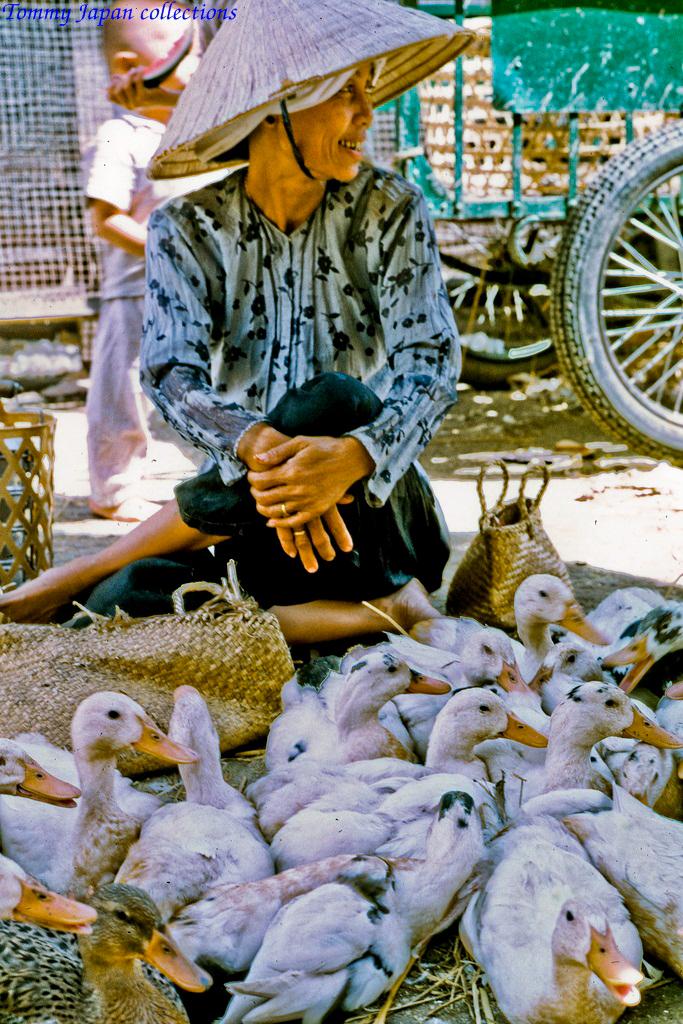 Bán vịt ở chợ Mỹ Tho năm 1969   Photo by Lance Cromwell