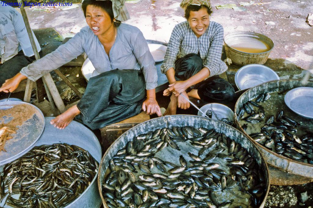 Cô bán cá ở chợ Mỹ Tho năm 1969   Photo by Lance Cromwell