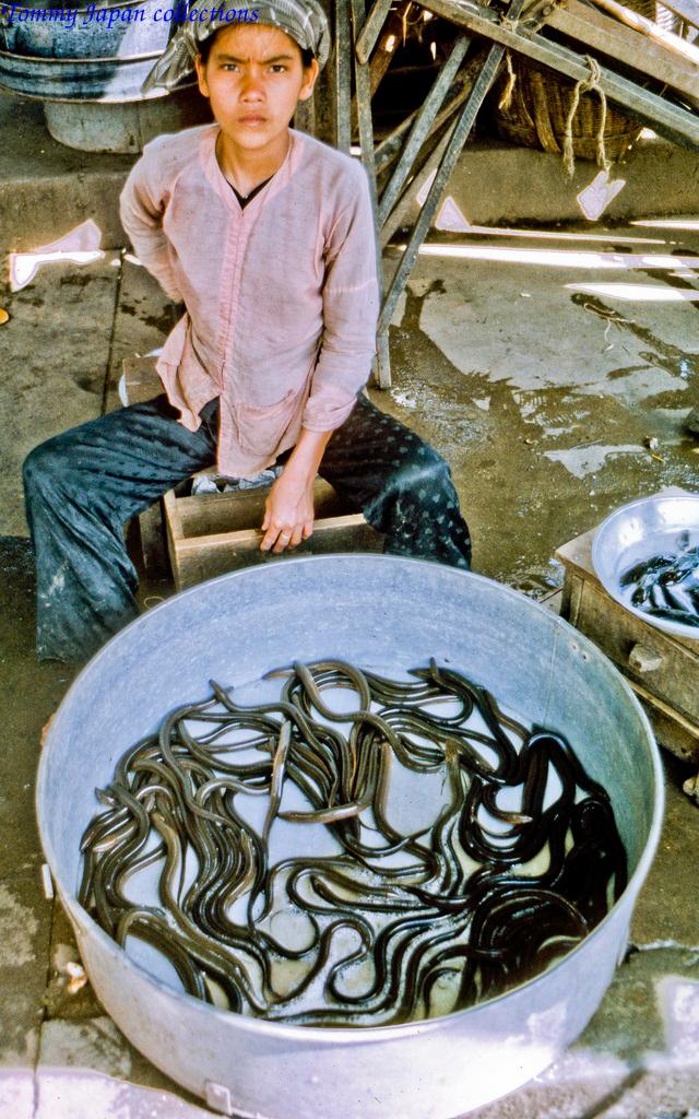 Người bán lươn ở chợ Mỹ Tho năm 1969   Photo by Lance Cromwell