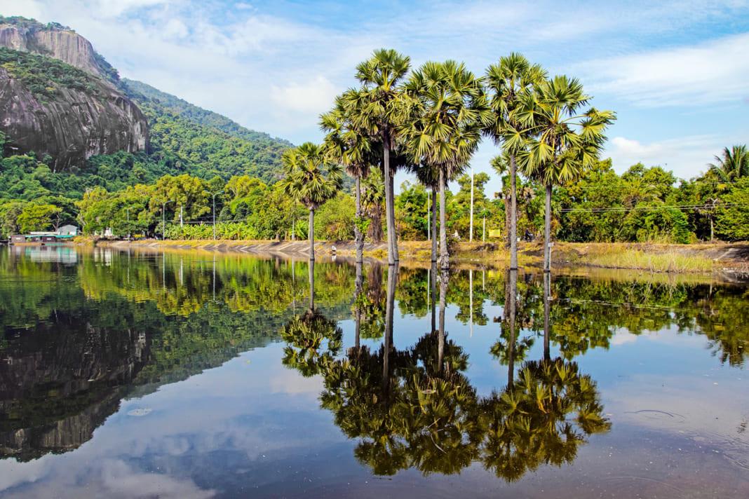 Thiên nhiên yên bình ở Hồ Soài So An Giang