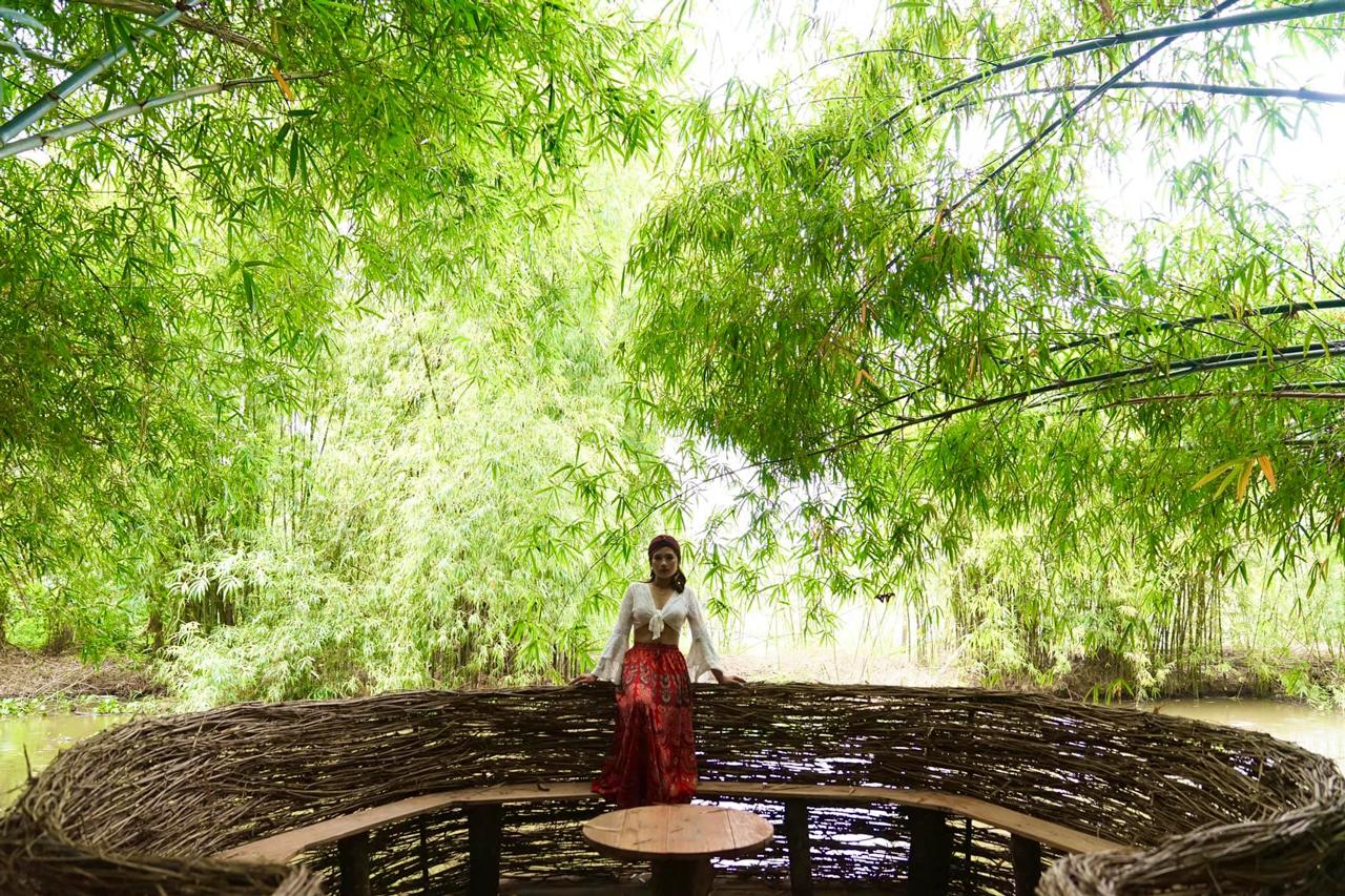Tiểu cảnh tổ chim nhìn ra sông và những cây tre bao phủ
