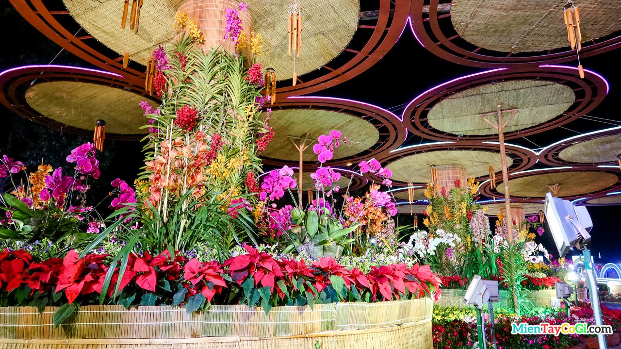 Vườn lan chất lượng cao ở đường hoa Cần Thơ 2021