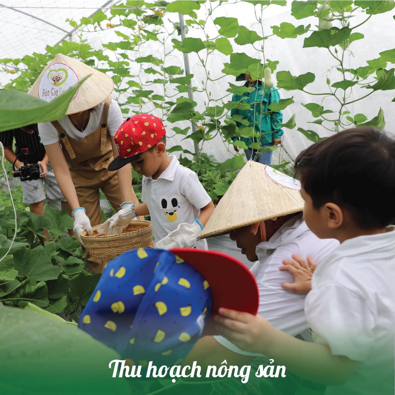 Dịch vụ thu hoạch nông sản