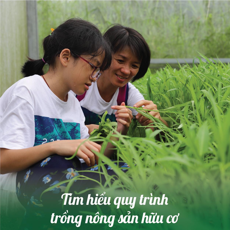 Tìm hiểu quy trình trồng nông phẩm hữu cơ ở Bảo Gia Trang Viên
